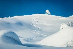 1.plass tema (vinter) Rune Helliesen
