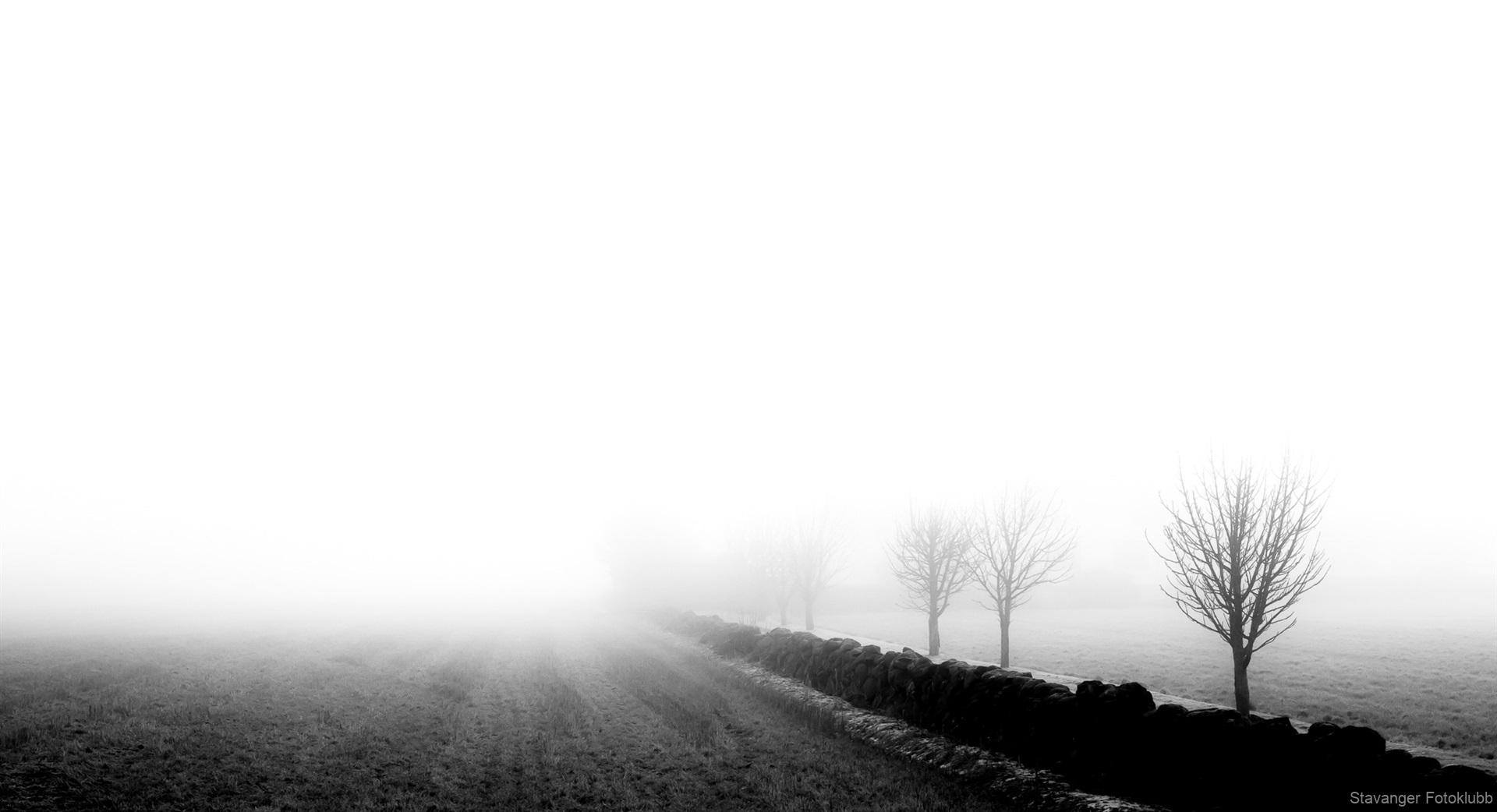 2. plass sort/hvitt Kjersti Øritsland